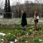 """Die Gärtnerin Elisabeth Schüller (rechts) erklärt der Landtagsabgeordneten Andrea Schwarz MdL den Anbau von Rosenkohl auf dem Feld von """"Gutes Gemüse – Initiative für eine solidarische Landwirtschaft e.V."""""""