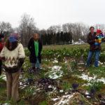 """Andrea Schwarz MdL besichtig eines von zwei Anbauflächen von """"Gutes Gemüse – Initiative für eine solidarische Landwirtschaft e.V."""", begleitet von drei aktiven Mitgliedern der Initiative."""