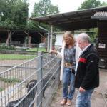 Andrea Schwarz MdL am Gehege der Ziegen, die neben den ganzen einheimischen und exotischen Vögeln auch im Park zu finden sind.