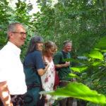 V. l. n. r.: Eric Bänziger, Bürgereister von Weingarten, Sonja Günthner, grüne Gemeinderätin in Weingarten, Andrea Schwarz MdL und Michael Schmitt, Weingartens Gemeindeförster.