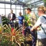 Dr. Heiko Hentrich erklärt der interessierten Gruppe rund um Andrea Schwarz MdL und Danyal Bayaz MdB wie die Ananas wächst, und für welche homöopathischen Mittel sie verwendet werden kann.